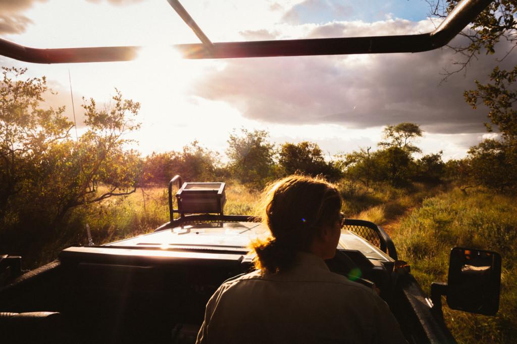 safari1-mariuszchrapko.com