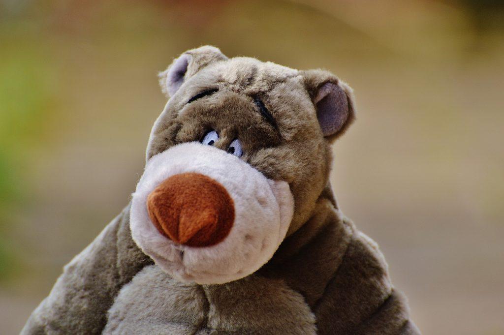 bear-1236442_1280